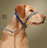 stay away pet deterrent review